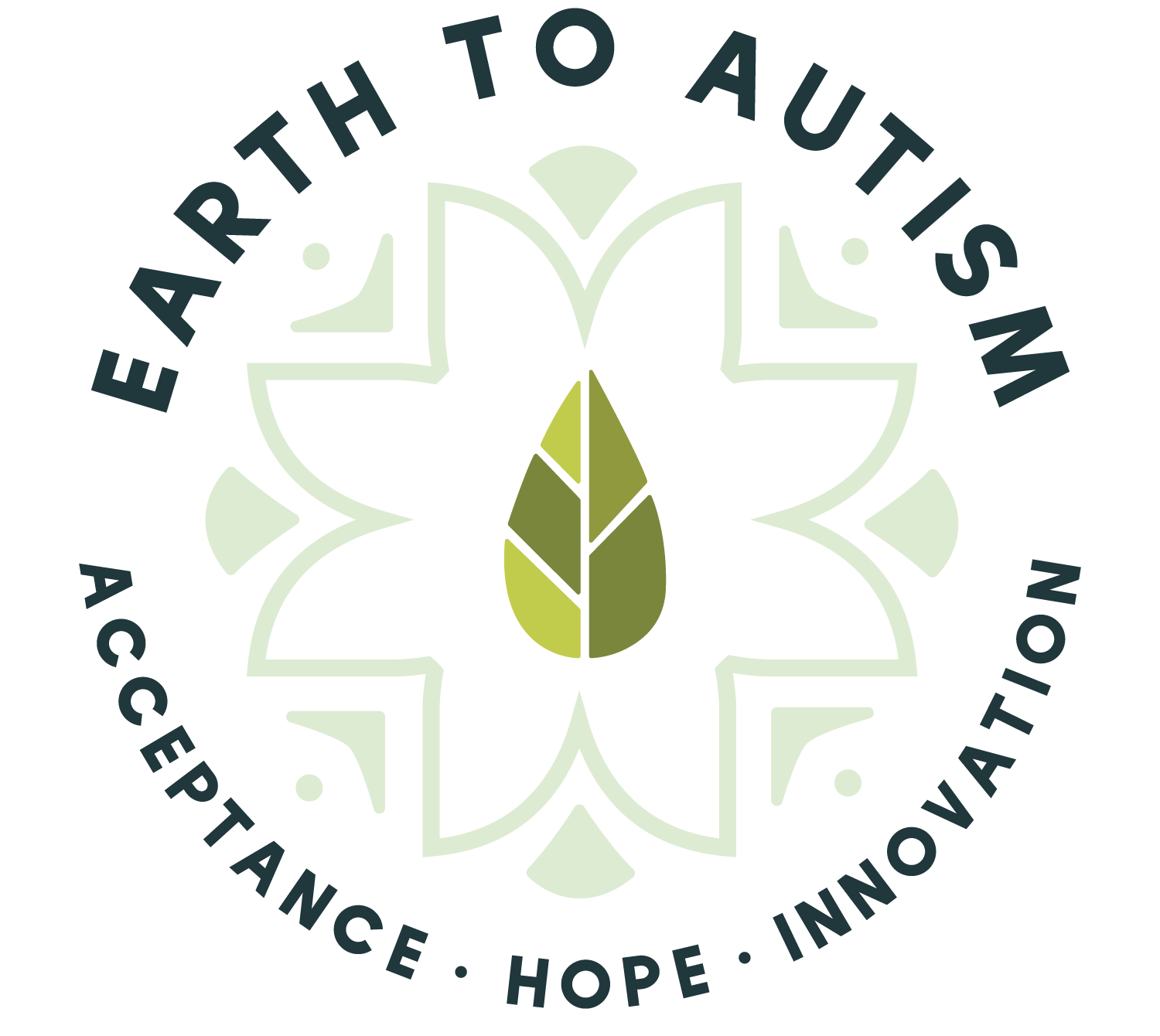 Earth to Autism